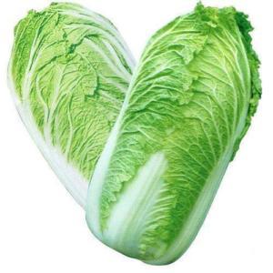 Chinese cabbage Emika F1