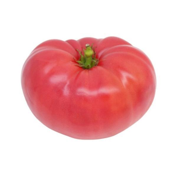 Tomato Pink Flex F1