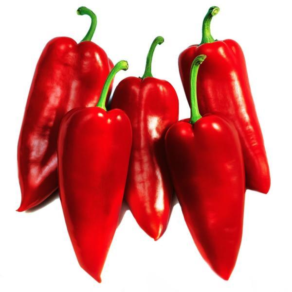 Pepper Belcanto F1