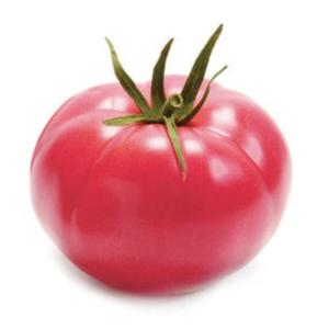 Tomato Brimmer F1