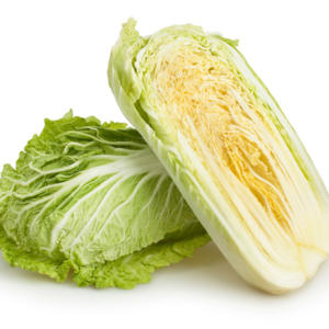Chinese cabbage Siggy F1